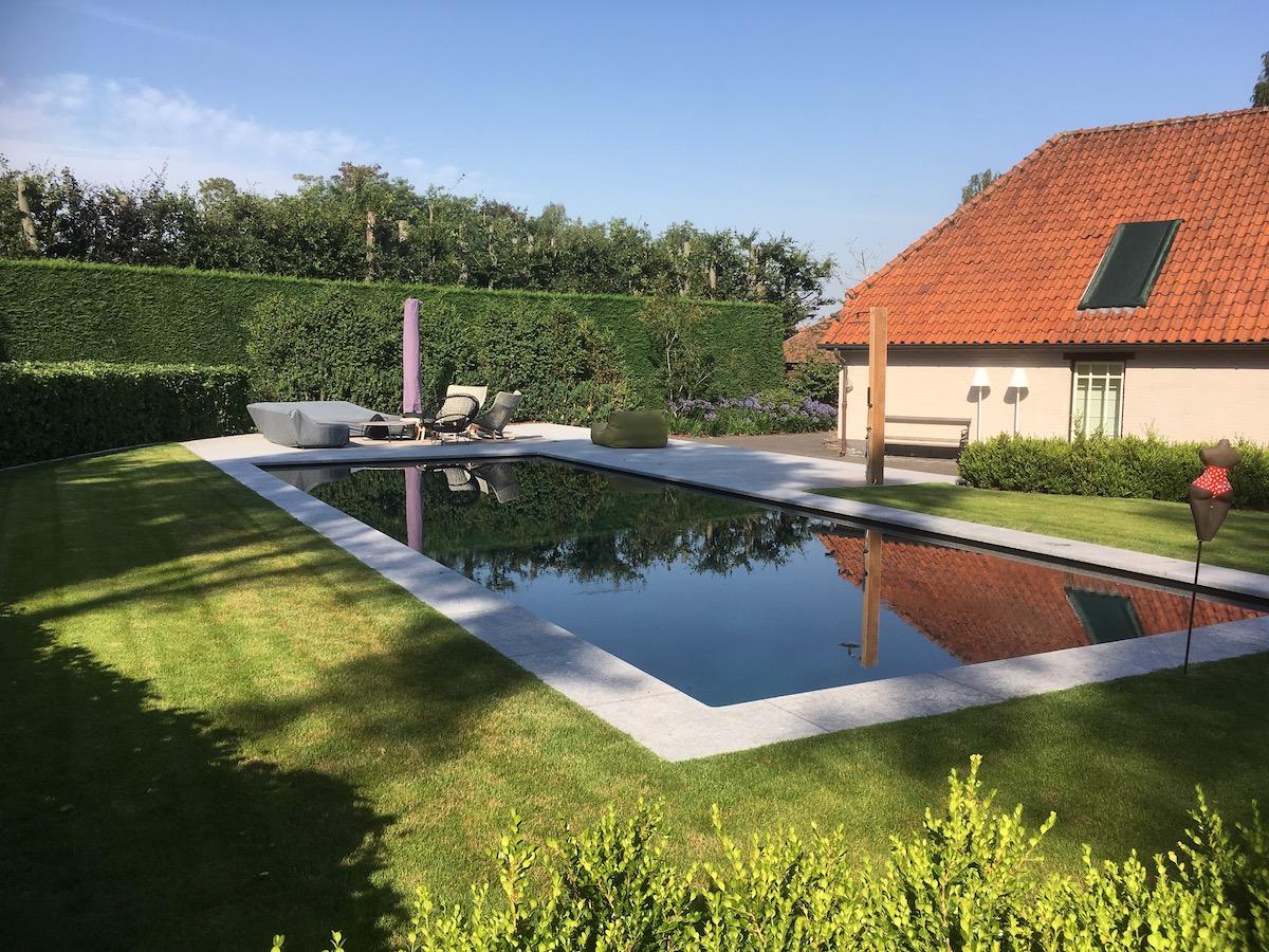 Inspiratiebeeld van een tuinontwerp met zwembad